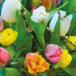 Möt våren genom att fira Tulpanens dag, måndagen den 15 januari